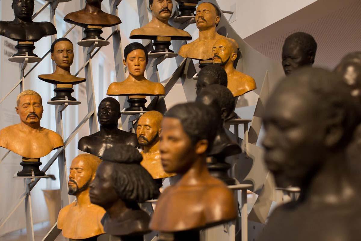 La grande galerie de bustes au Musée de l'Homme